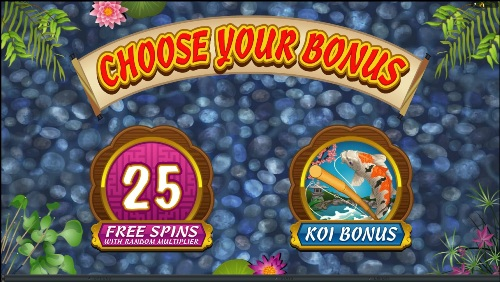 Lucky Koi Video Slot